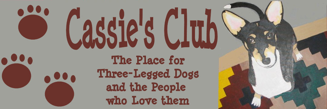 Three Legged Dog Club